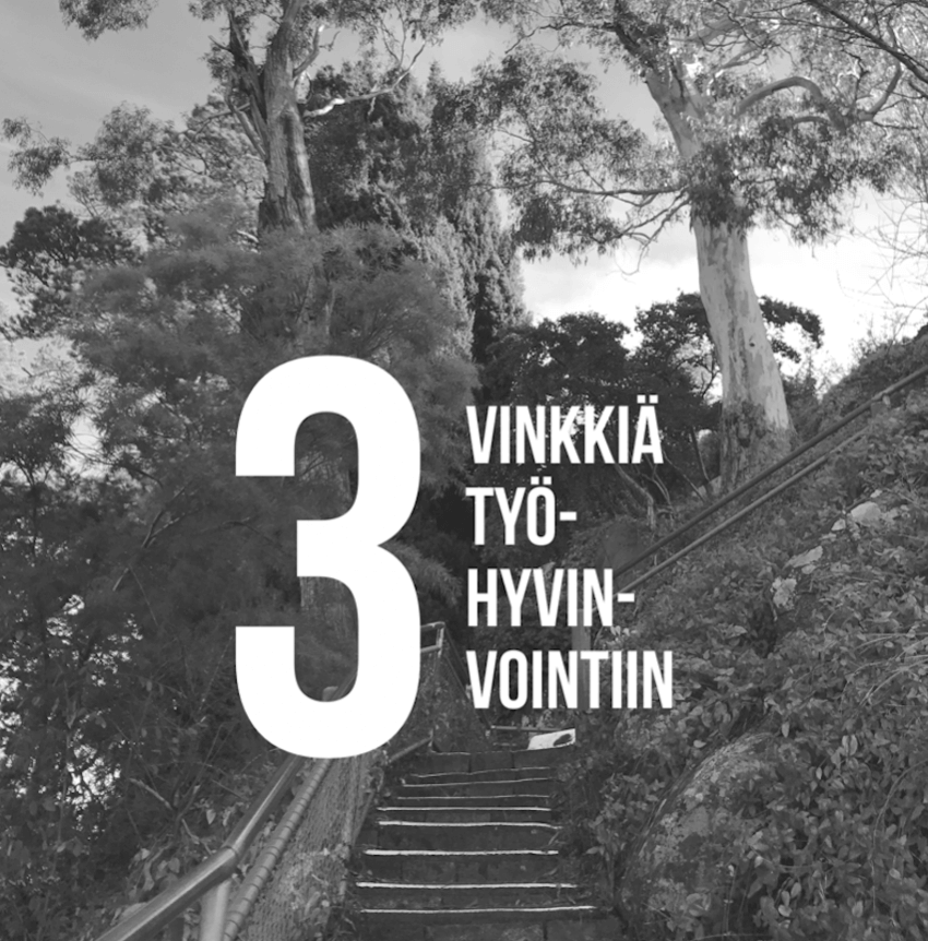 3vinkkia7